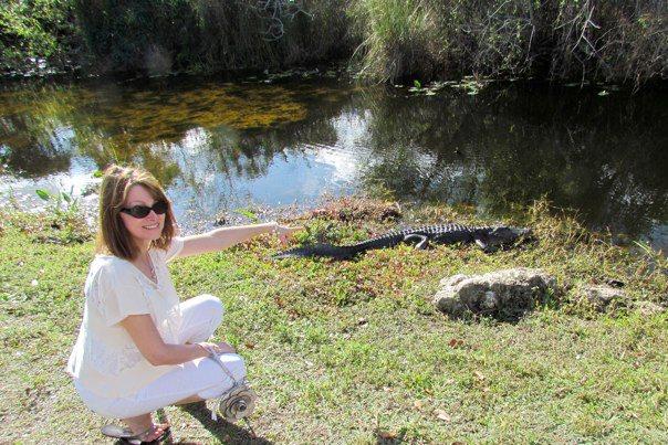 Florida gator