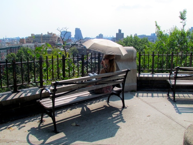 lookout point - Harlem
