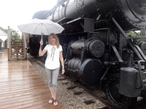 houndstooth umbrella