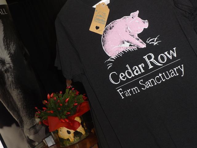cedar-row-farm-sanctuary