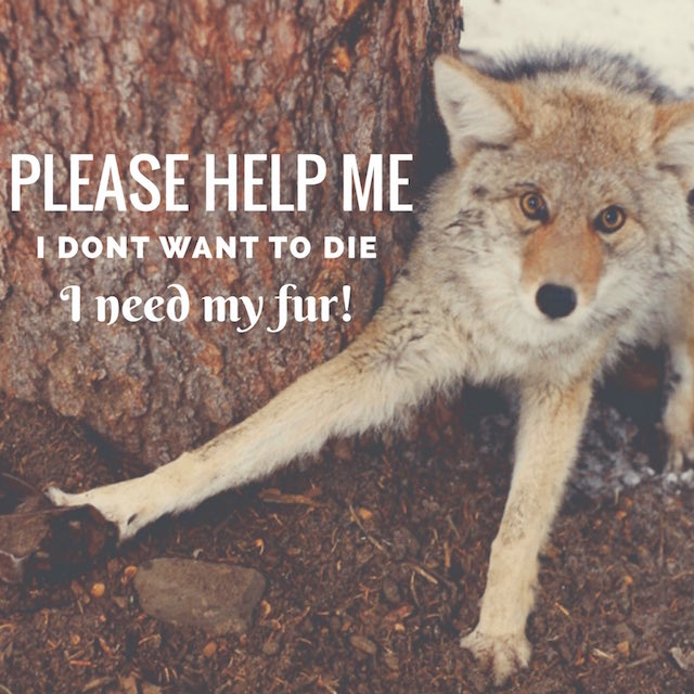 please-help-me