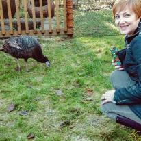 turkey 2015