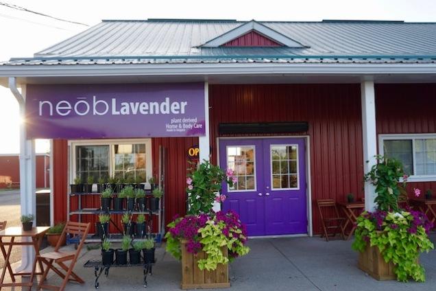 neob lavender shop