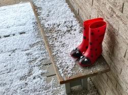ladybug boots